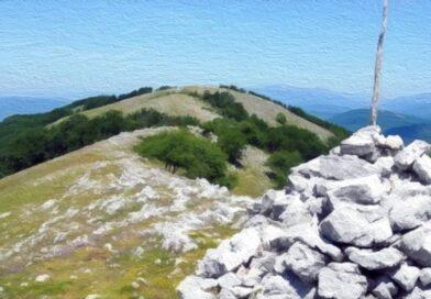 """""""Alla ricerca dell'aereo caduto sul monte Pellecchia"""""""