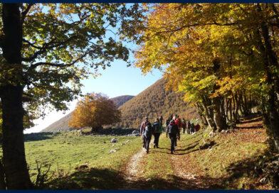 Foliage sul Monte Tranquillo da Forca d'Acero