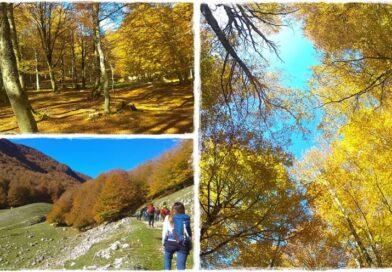 Forca d'Acero (FR, AQ), Foliage tra grotte, faggi e il santuario di Monte Tranquillo