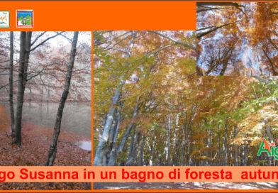 """""""Il Lago Susanna in un bagno di foresta autunnale"""" Prato di Campoli, Veroli(Fr)"""